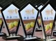 Circuito ITF Seniors de Tênis conhece campeões no Pinheiros